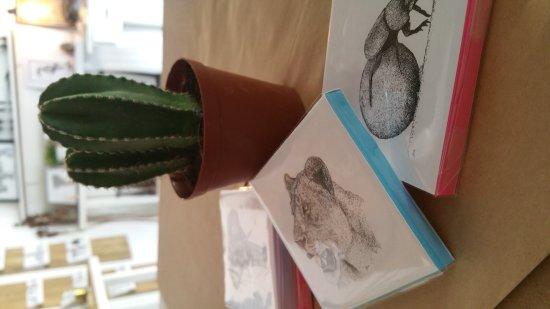 Hoedspruit, Sør-Afrika: Kingfisher Gallery
