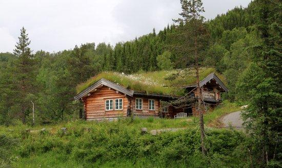 Gudvangen, Noruega: Beautiful home..