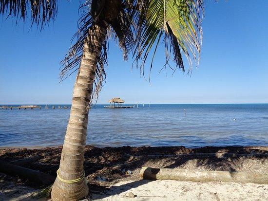 Long Caye Foto