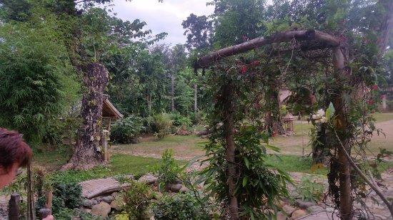 Alma's Garden
