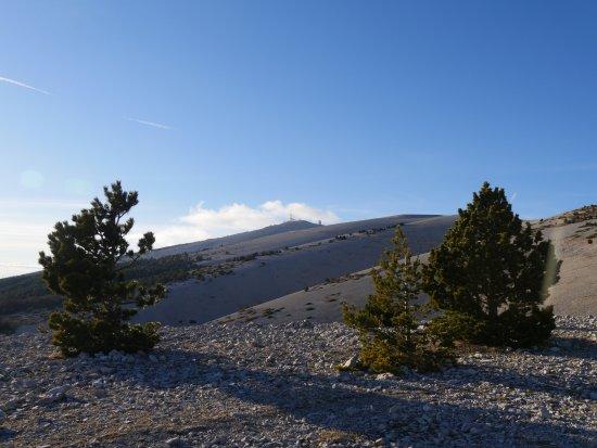Vaison-la-Romaine, Francja: Au loin ... Le sommet !