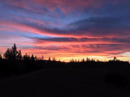 Napa Valley, CA: Dawn breaking