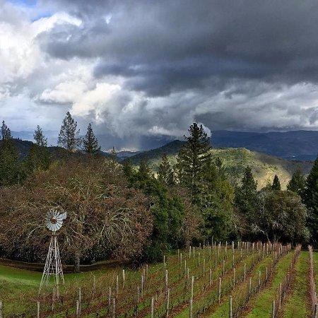 Napa Valley, CA: More rain coming