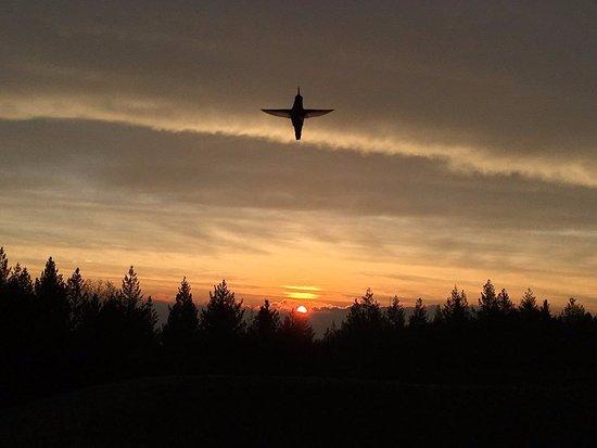 Napa Valley, Califórnia: Hummer at daybreak