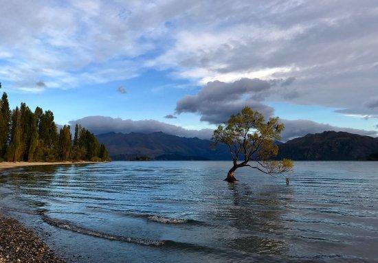 Wanaka, Nouvelle-Zélande : photo4.jpg