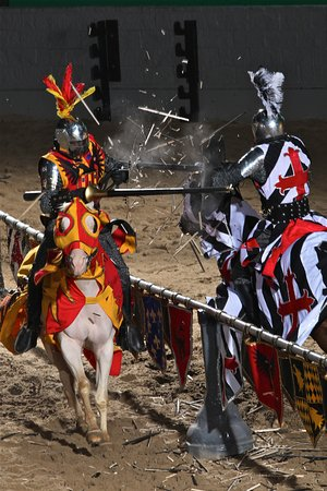 a pure spanish horse performs the capriole during the tournament at