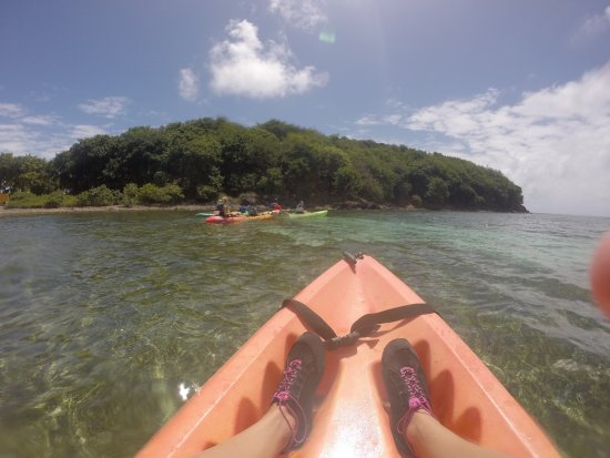 Barefoot Travelers Kayak Tour to Monkey Island: photo0.jpg