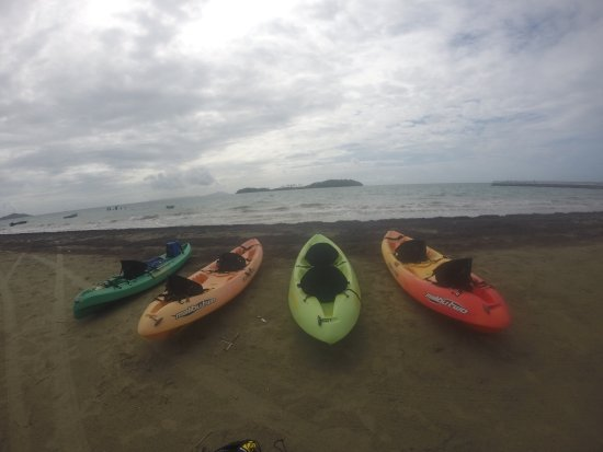 Barefoot Travelers Kayak Tour to Monkey Island: photo3.jpg