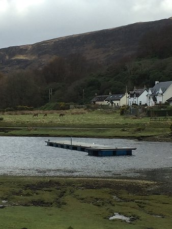 Lochranza, UK: photo1.jpg
