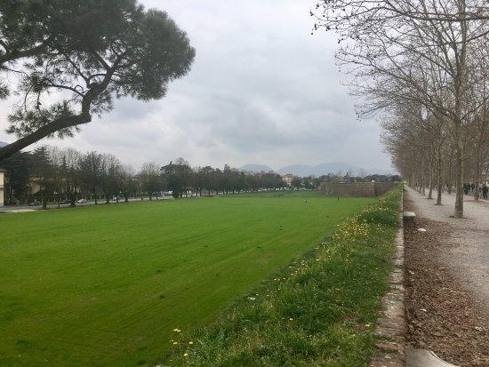 Le mura di Lucca: photo1.jpg