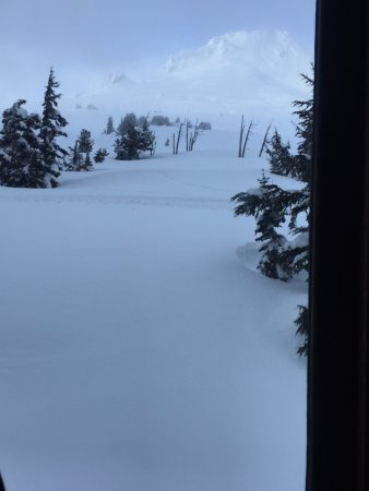 Timberline Lodge, OR: View from Ram's Head bar looking north at the summit of Mt. Hood in early March
