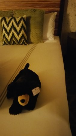 Hotel Terra Jackson Hole, A Noble House Resort: Welcome plush on the bed (for a price)