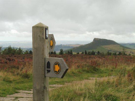 Грейт-Эйтон, UK: The path to Roseberry Topping