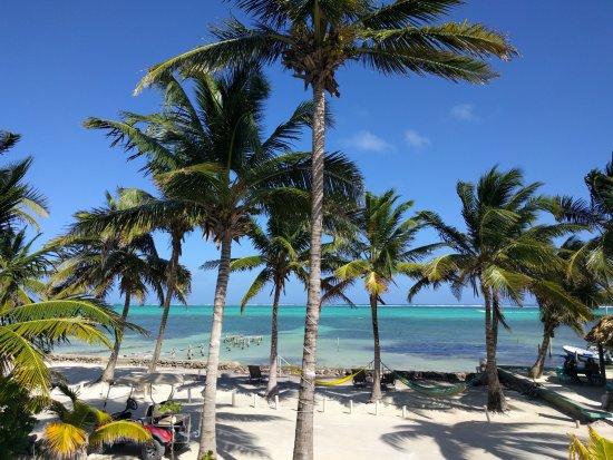Aqua Vista Beachfront Suites: View from deck