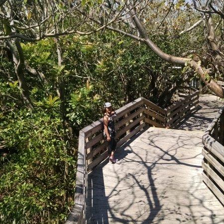 Juno Beach, FL: IMG_20170322_131337_432_large.jpg