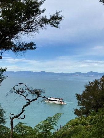 Abel Tasman National Park, New Zealand: photo5.jpg