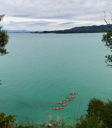 Abel Tasman National Park, New Zealand: photo8.jpg