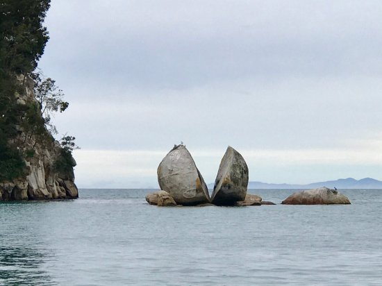 Abel Tasman National Park, Nuova Zelanda: photo9.jpg