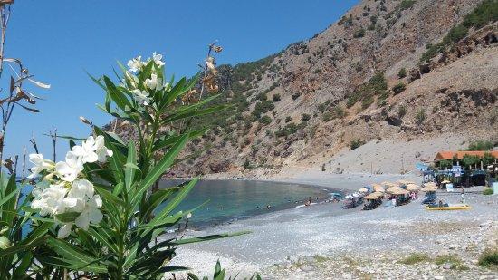 Balos Beach and Lagoon: Plaża w Agia Roumeli
