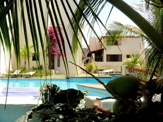 Foto de Tropical Gardens Suites & Apartments