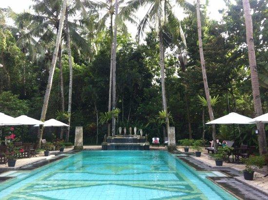 Saraswati Borobudur: Peaceful and green!