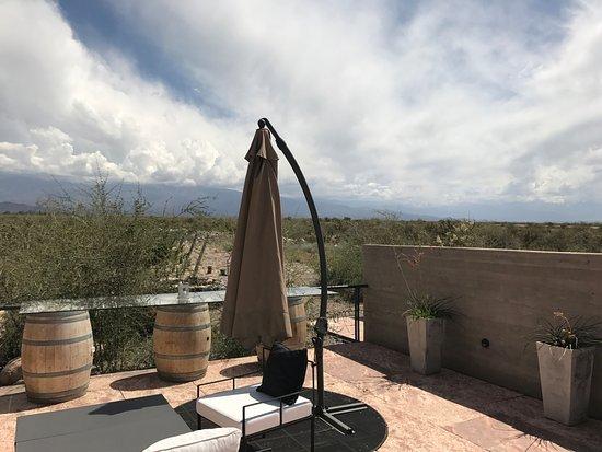 Exploring Mendoza - Private Day Tours