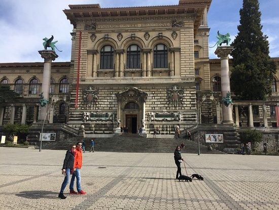 Cantonal Museum of Fine Arts (Musee Cantonal des Beaux-Arts): het Cantonal Museum of Fine Arts