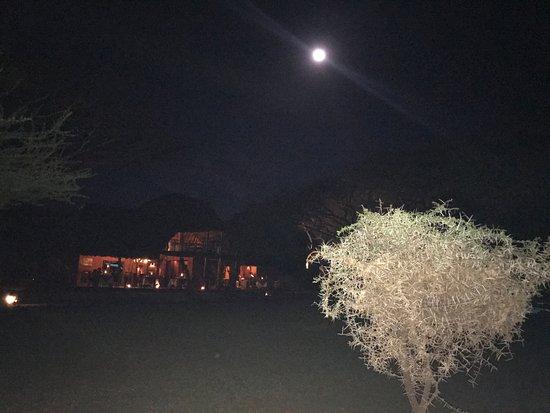 Tawi Lodge照片