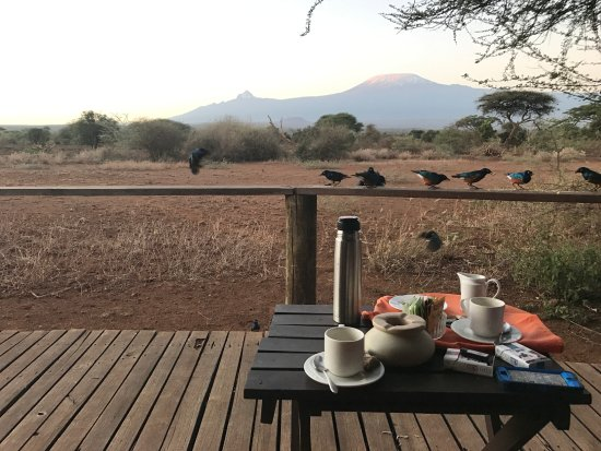 Tawi Lodge: Early morning tea--the most wonderful African tradition. And Kili in the background...