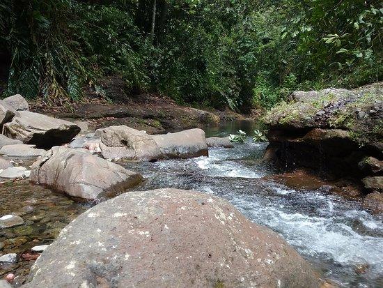 Petit-Bourg, Guadeloupe: La rivière en aval.