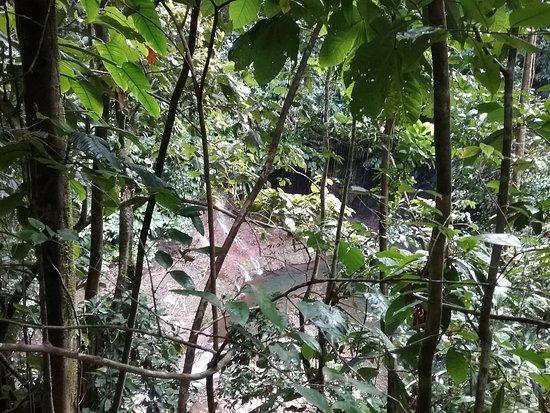 Petit-Bourg, Guadeloupe: Nous y sommes presque !