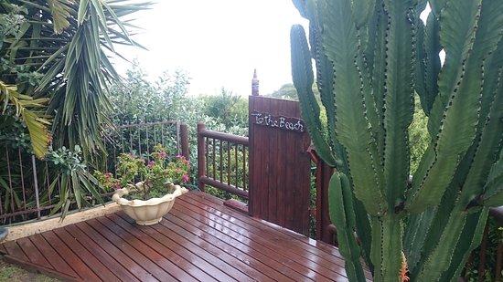 Джеффрис-Бей, Южная Африка: DSC_0001_large.jpg