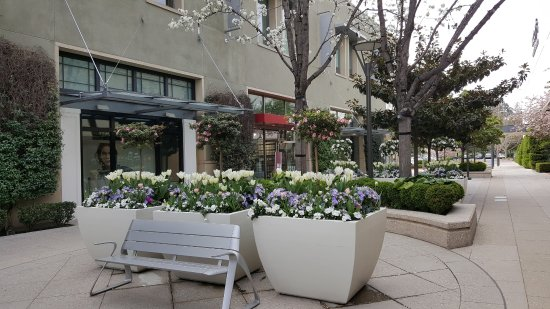 Palo Alto, Kaliforniya: The Stanford Shopping Center