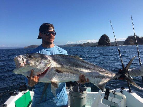 Playa Hermosa, Costa Rica: AAAAHHHHHHHHHHHH Rooster Fish