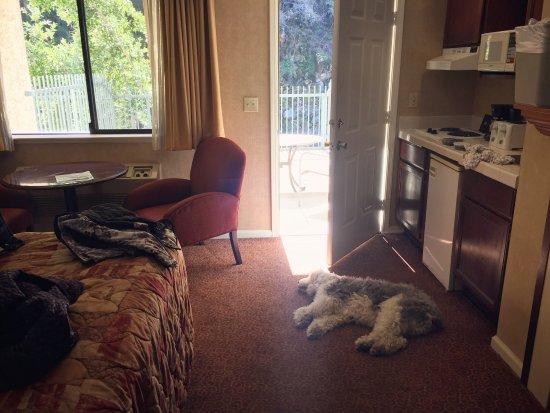 โรงแรมโยสมิตวิวลอดจ์: Seating area by window, door to patio, and kitchenette.