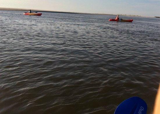 Saint Simons Island, GA: Kayaking in Gould's Inlet.