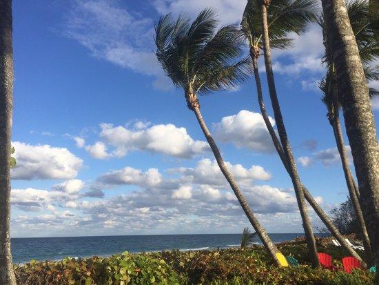 Jupiter Beach Resort: photo2.jpg