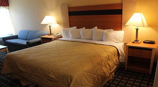 Regency Inn & Suites-3