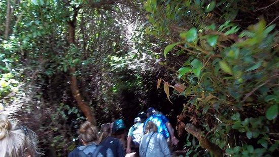Poas Volcano National Park, Costa Rica: el sendero