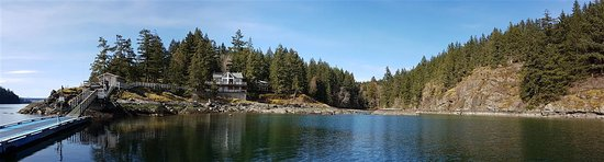 Quadra Island Picture
