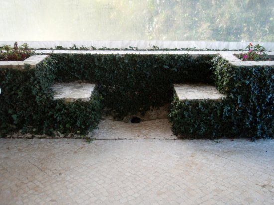Tivoli Palácio de Seteais Picture