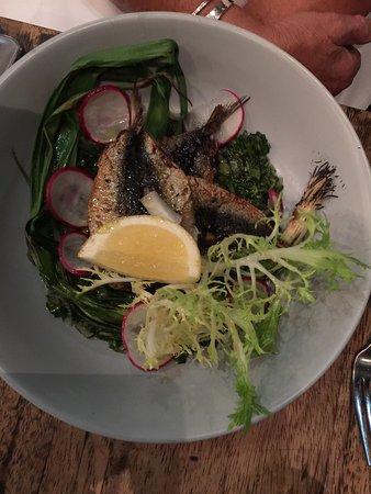 Peregian Beach, Australia: sardines