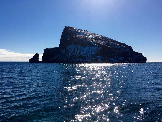 Major Marine Tours Half Day Kenai Fjords Wildlife Cruise