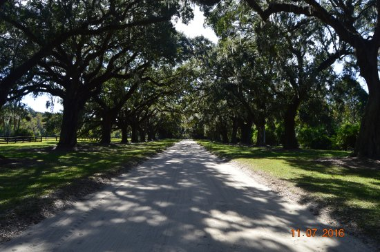 Mount Pleasant, Carolina del Sur: Entry road