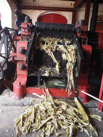 Saint Peter Parish, Barbados: sugar cane grinder