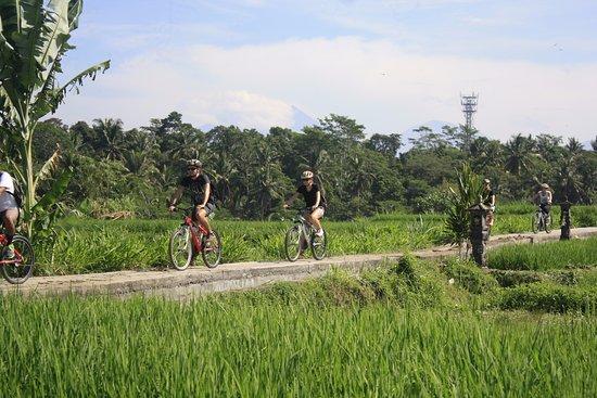Bali Scenes