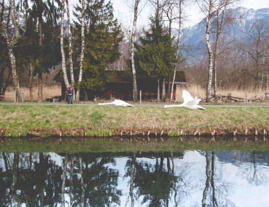Aigle, Szwajcaria: The Grand Canal