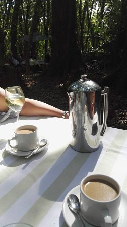 Somerset West, Sudafrica: beautiful coffee pot