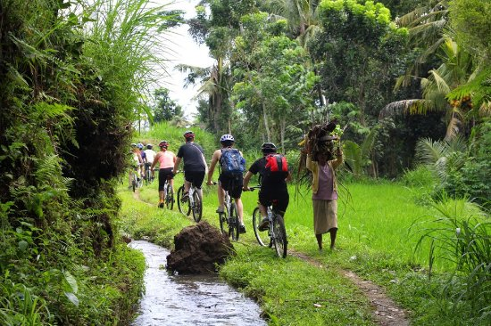 Bali Hai Bike Tours: Discover the real countryside of Bali in an absolutely different way.