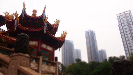 Fuzhou, China: P1015739_large.jpg